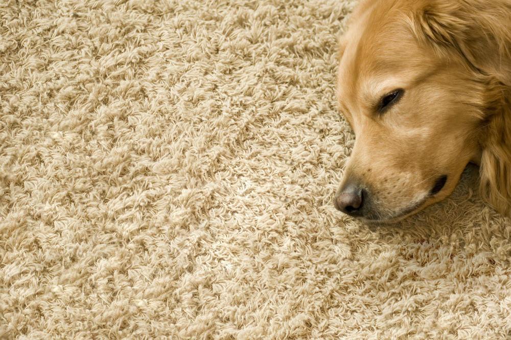 Aprovechar los trozos restantes de tu alfombra a medida.