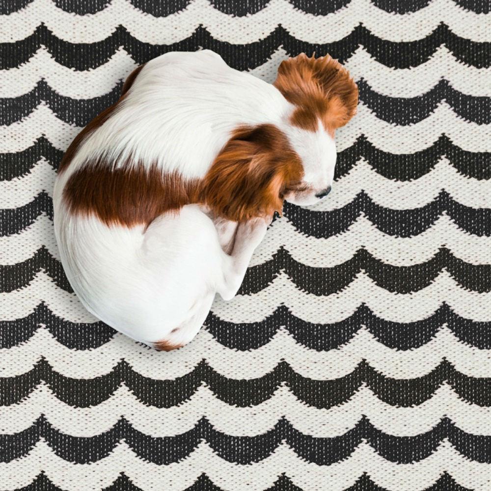 Tienda online alfombras ao las alfombras m s buscadas en for De que estan hechas las alfombras